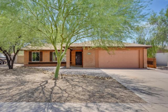809 E Monte Cristo Avenue, Phoenix, AZ 85022 (MLS #5808885) :: Devor Real Estate Associates