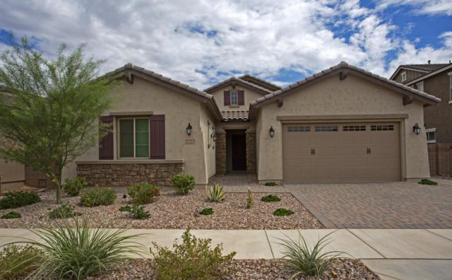 20285 E Hummingbird Drive, Queen Creek, AZ 85142 (MLS #5808892) :: Yost Realty Group at RE/MAX Casa Grande