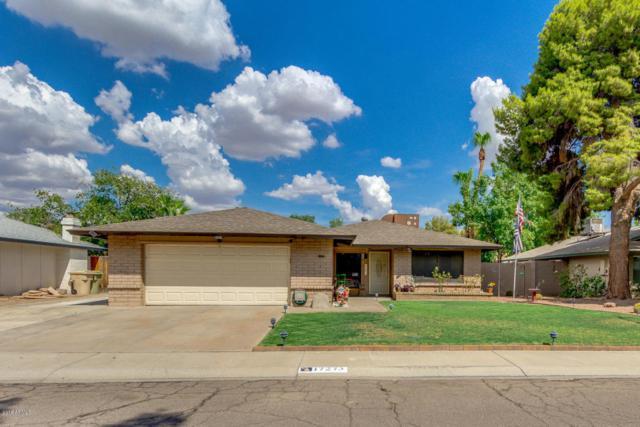 17273 N 55TH Drive, Glendale, AZ 85308 (MLS #5808900) :: Devor Real Estate Associates