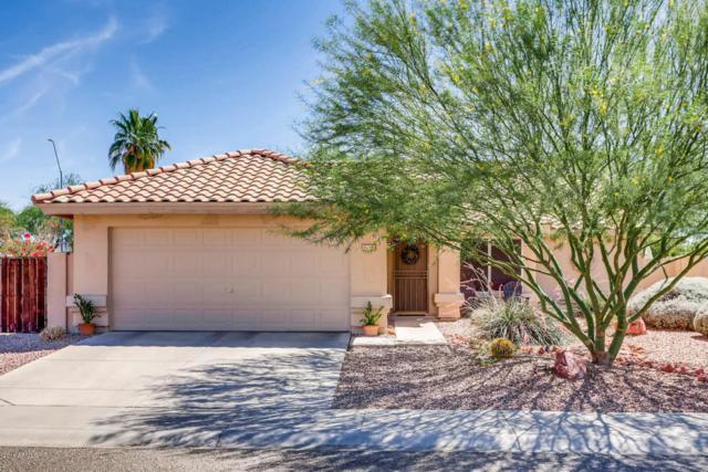 22527 N 74TH Avenue, Glendale, AZ 85310 (MLS #5808910) :: Devor Real Estate Associates