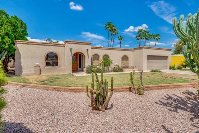 5108 E Corrine Drive, Scottsdale, AZ 85254 (MLS #5808960) :: The Carin Nguyen Team