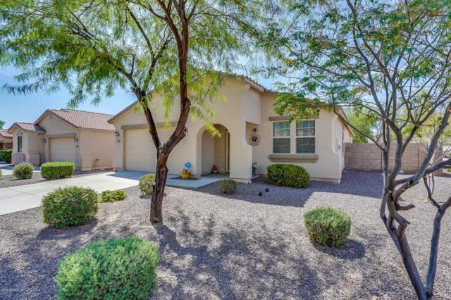 151 E Gold Dust Way, San Tan Valley, AZ 85143 (MLS #5808974) :: Yost Realty Group at RE/MAX Casa Grande