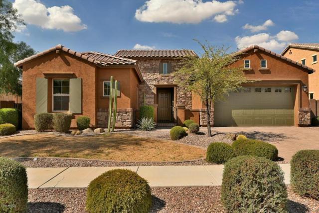 20250 E Escalante Road, Queen Creek, AZ 85142 (MLS #5809018) :: Yost Realty Group at RE/MAX Casa Grande