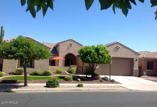 2066 E Crescent Place, Chandler, AZ 85249 (MLS #5809019) :: Gilbert Arizona Realty