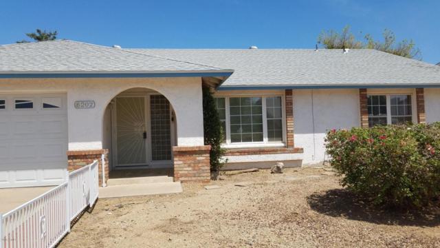 6202 W Sunnyside Drive, Glendale, AZ 85304 (MLS #5809026) :: Kortright Group - West USA Realty