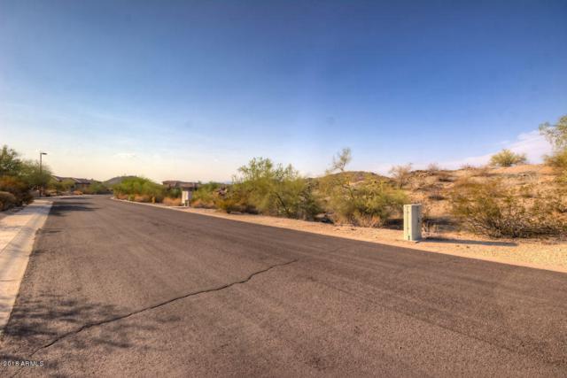 18358 W Santa Alberta Lane, Goodyear, AZ 85338 (MLS #5809085) :: Kortright Group - West USA Realty