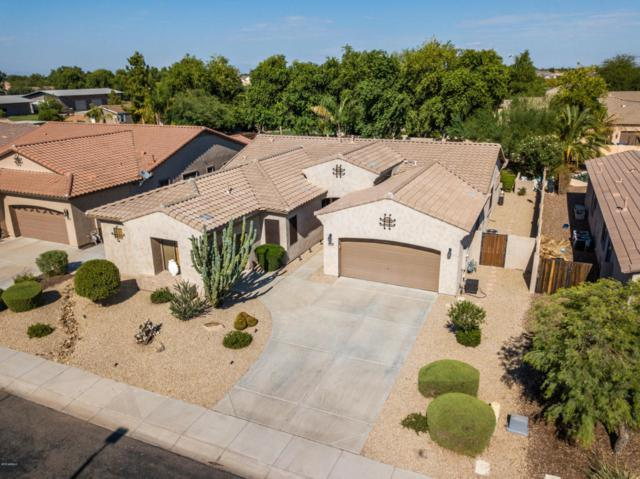 5771 S Mesquite Grove Way, Chandler, AZ 85249 (MLS #5809088) :: Kortright Group - West USA Realty