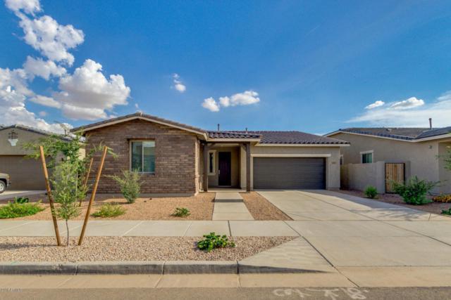 22489 E Duncan Street, Queen Creek, AZ 85142 (MLS #5809096) :: Kortright Group - West USA Realty