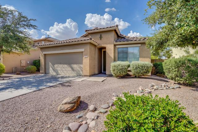 3470 E Riopelle Avenue, Gilbert, AZ 85298 (MLS #5809102) :: The Everest Team at My Home Group