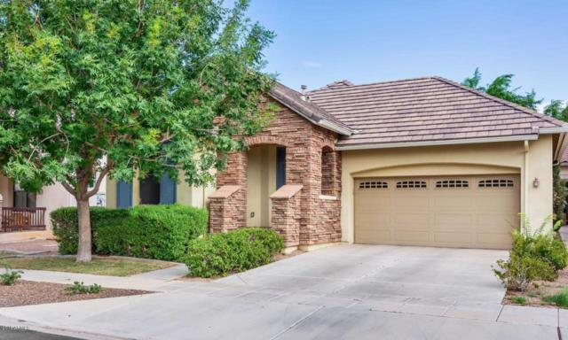 15190 W Aster Drive, Surprise, AZ 85379 (MLS #5809146) :: Kortright Group - West USA Realty