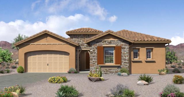10369 W Rowel Road, Peoria, AZ 85383 (MLS #5809158) :: The Garcia Group @ My Home Group