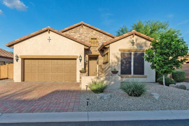 2737 N Raven, Mesa, AZ 85207 (MLS #5809185) :: Lifestyle Partners Team