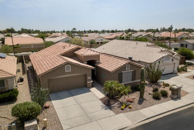 18115 N Fiesta Drive, Surprise, AZ 85374 (MLS #5809215) :: Lifestyle Partners Team