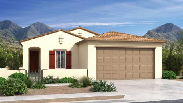 16193 W Canterbury Drive, Surprise, AZ 85379 (MLS #5809221) :: Lifestyle Partners Team