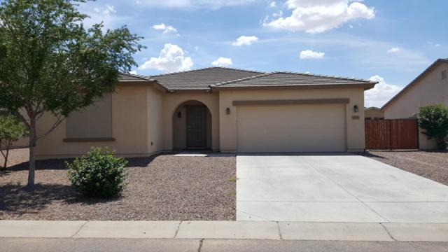 2035 W Sawtooth Way, Queen Creek, AZ 85142 (MLS #5809228) :: Yost Realty Group at RE/MAX Casa Grande