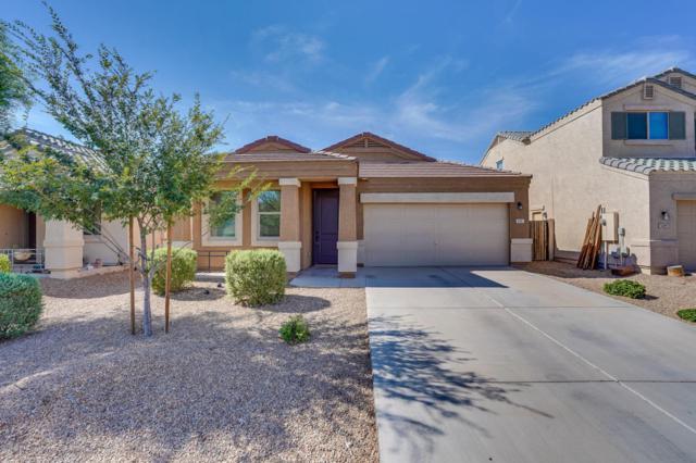 5031 E Iolite Street, San Tan Valley, AZ 85143 (MLS #5809260) :: Yost Realty Group at RE/MAX Casa Grande
