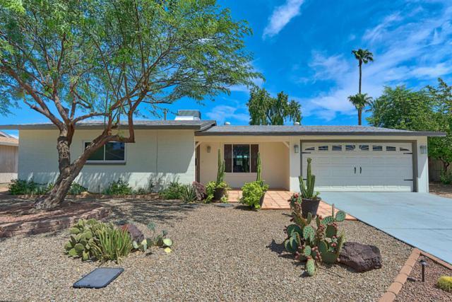 8520 E Clarendon Avenue, Scottsdale, AZ 85251 (MLS #5809280) :: Yost Realty Group at RE/MAX Casa Grande