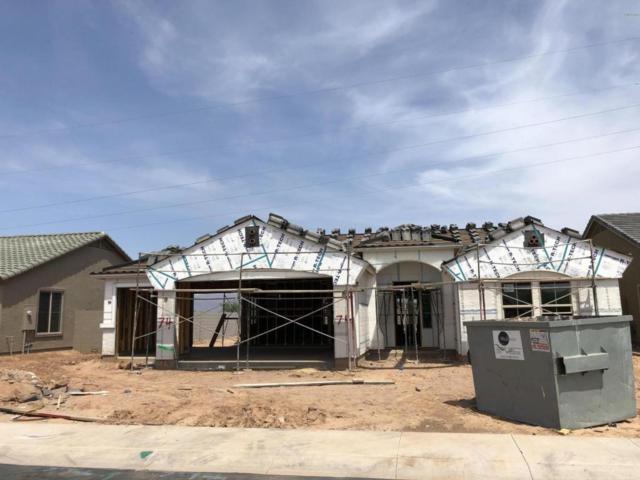 4921 S Brice Circle, Mesa, AZ 85212 (MLS #5809338) :: Yost Realty Group at RE/MAX Casa Grande