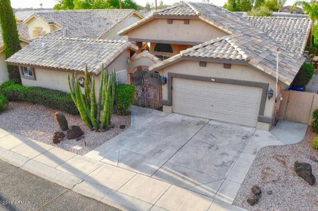 14618 W Morning Star Trail, Surprise, AZ 85374 (MLS #5809340) :: Yost Realty Group at RE/MAX Casa Grande
