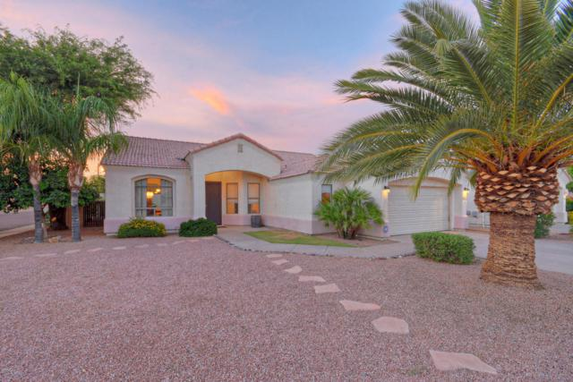 6204 E Phelps Road, Scottsdale, AZ 85254 (MLS #5809350) :: Yost Realty Group at RE/MAX Casa Grande
