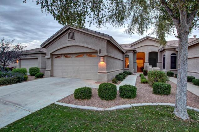 9608 E Arrowvale Drive, Sun Lakes, AZ 85248 (MLS #5809385) :: Yost Realty Group at RE/MAX Casa Grande