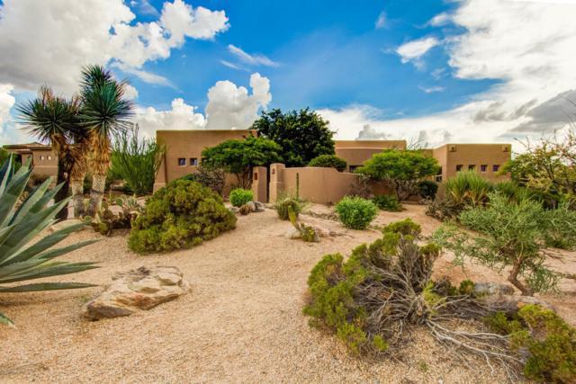 10375 E White Feather Lane, Scottsdale, AZ 85262 (MLS #5809387) :: Yost Realty Group at RE/MAX Casa Grande