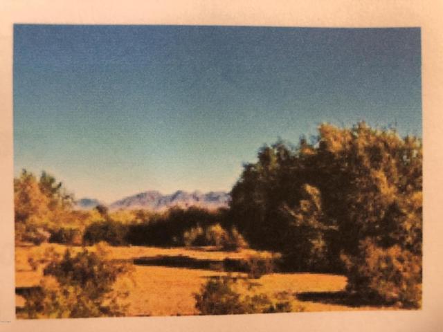 60002 aprx S 299 Avenue, Gila Bend, AZ 85337 (MLS #5809391) :: Team Wilson Real Estate