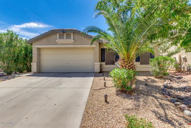 40859 W Thornberry Lane, Maricopa, AZ 85138 (MLS #5809415) :: Yost Realty Group at RE/MAX Casa Grande