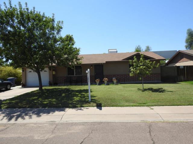 3624 S Margo Drive, Tempe, AZ 85282 (MLS #5809430) :: The W Group