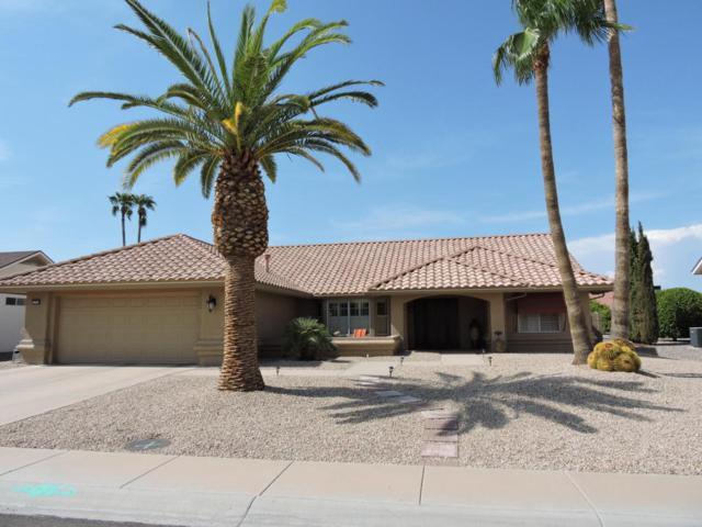13518 W Sky Hawk Drive, Sun City West, AZ 85375 (MLS #5809441) :: Yost Realty Group at RE/MAX Casa Grande