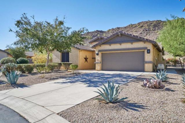 31986 N Larkspur Drive, San Tan Valley, AZ 85143 (MLS #5809525) :: Yost Realty Group at RE/MAX Casa Grande