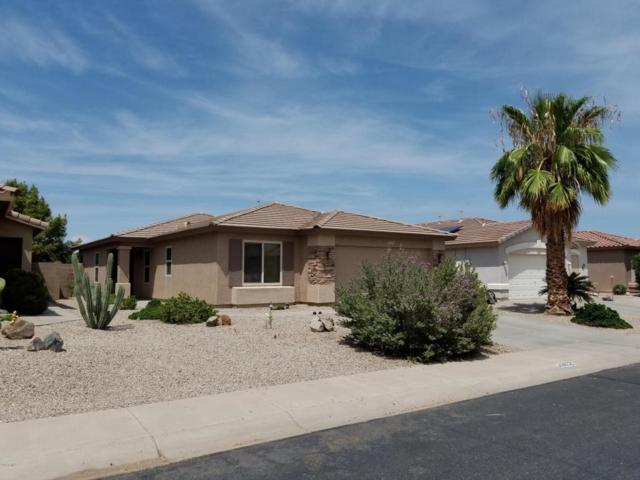 43652 W Bedford Drive, Maricopa, AZ 85138 (MLS #5809621) :: Yost Realty Group at RE/MAX Casa Grande
