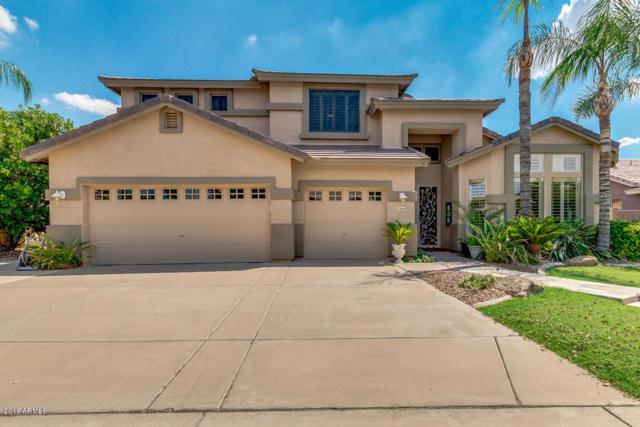 9665 E Navarro Avenue, Mesa, AZ 85209 (MLS #5809644) :: Brett Tanner Home Selling Team