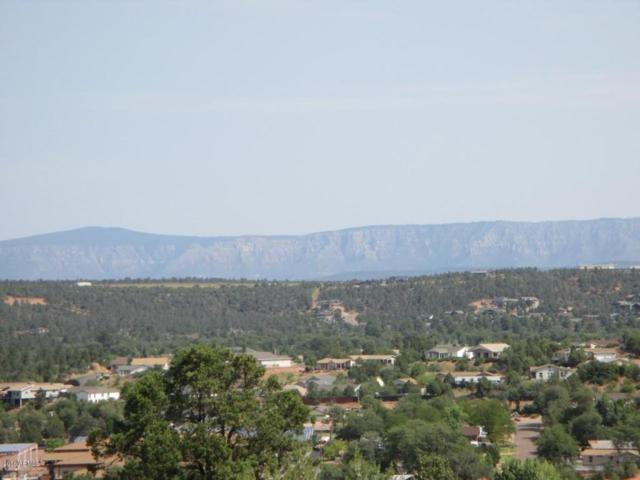 1015 S Lakeview Drive, Payson, AZ 85541 (MLS #5809647) :: The Bill and Cindy Flowers Team