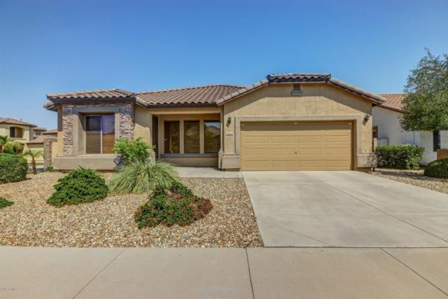 15523 N 181ST Avenue, Surprise, AZ 85388 (MLS #5809652) :: Occasio Realty