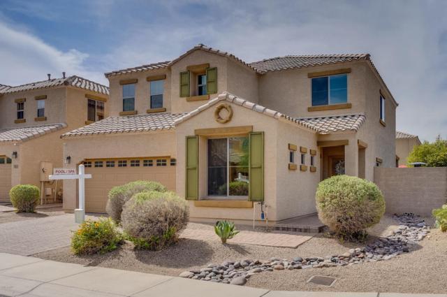 2419 W Skinner Drive, Phoenix, AZ 85085 (MLS #5809676) :: Keller Williams Realty Phoenix