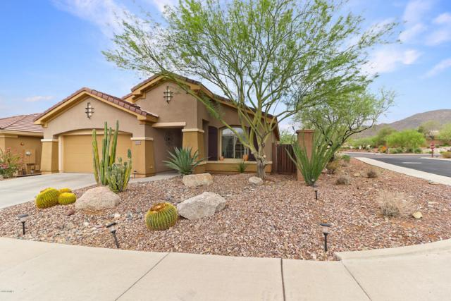 41448 N Bent Creek Way, Anthem, AZ 85086 (MLS #5809684) :: Keller Williams Realty Phoenix