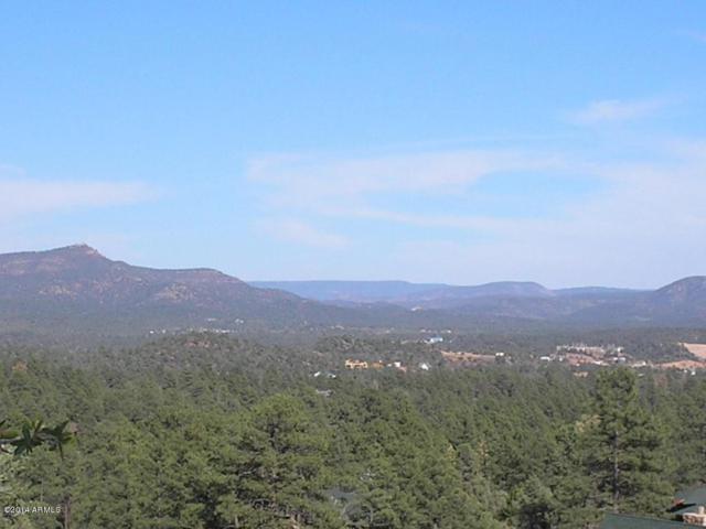 602 N Grapevine Drive, Payson, AZ 85541 (MLS #5809686) :: The Garcia Group @ My Home Group
