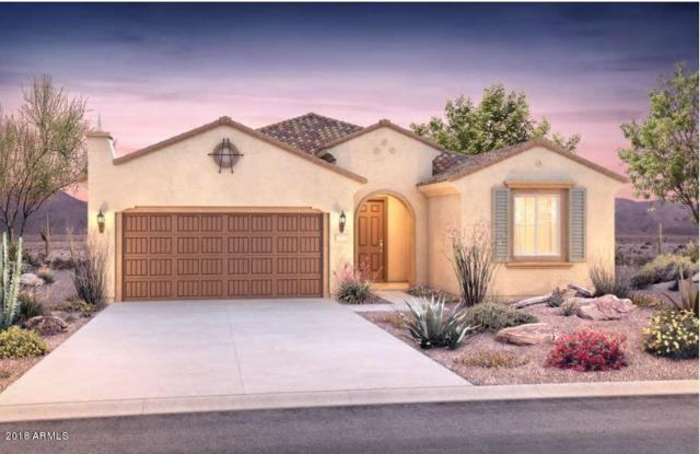 27495 W Mohawk Lane, Buckeye, AZ 85396 (MLS #5809694) :: Santizo Realty Group