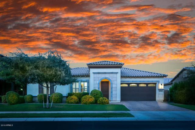 2650 E Sunrise Place, Chandler, AZ 85286 (MLS #5809724) :: Arizona 1 Real Estate Team