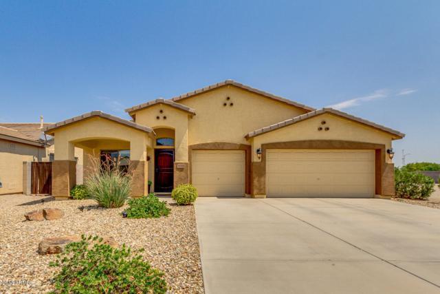 36308 W Costa Blanca Drive, Maricopa, AZ 85138 (MLS #5809793) :: Yost Realty Group at RE/MAX Casa Grande