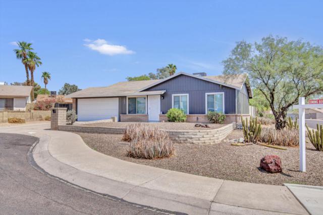 14834 N 21ST Street, Phoenix, AZ 85022 (MLS #5809878) :: Yost Realty Group at RE/MAX Casa Grande