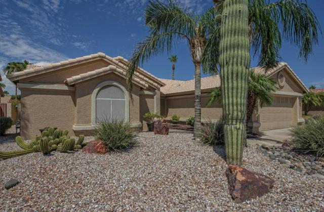 15294 W Piccadilly Road, Goodyear, AZ 85395 (MLS #5809977) :: The Garcia Group