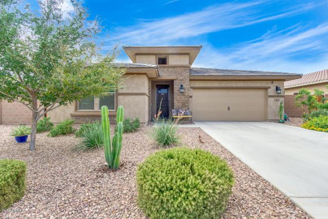 4459 W Goldmine Mountain Drive, Queen Creek, AZ 85142 (MLS #5809986) :: Gilbert Arizona Realty