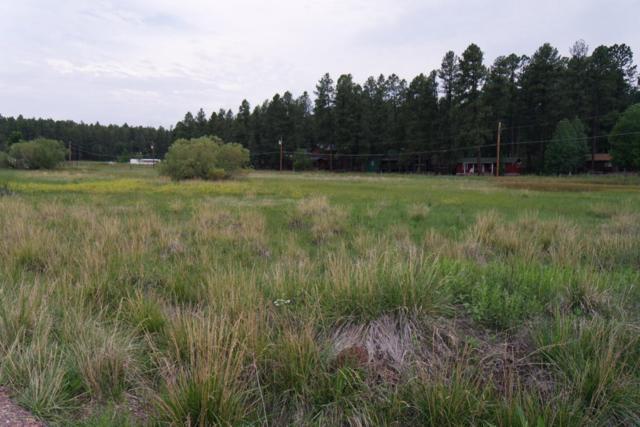 Lots 4 & 5 Tbd Senneca Pines Pines, Pinetop, AZ 85935 (MLS #5810163) :: RE/MAX Excalibur