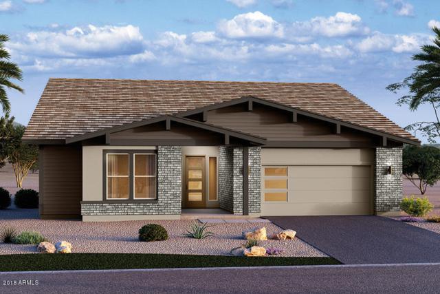 13869 W Harvest Avenue, Litchfield Park, AZ 85340 (MLS #5810306) :: Occasio Realty