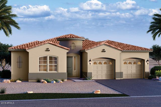 13879 W Harvest Avenue, Litchfield Park, AZ 85340 (MLS #5810310) :: The Garcia Group