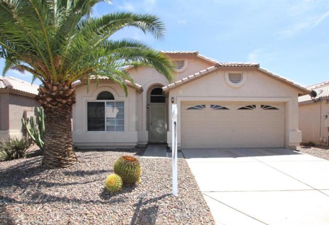 16623 N 23RD Place, Phoenix, AZ 85022 (MLS #5810334) :: The Garcia Group