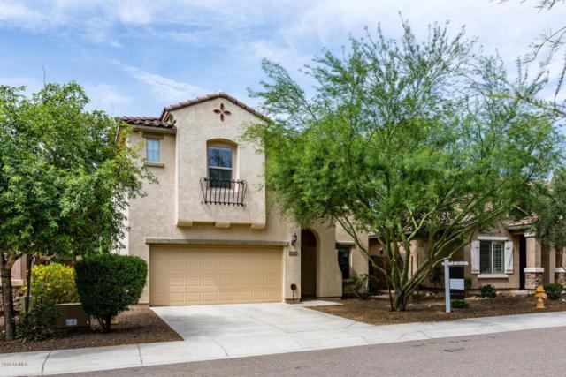 5423 W Hobby Horse Drive, Phoenix, AZ 85083 (MLS #5810350) :: REMAX Professionals