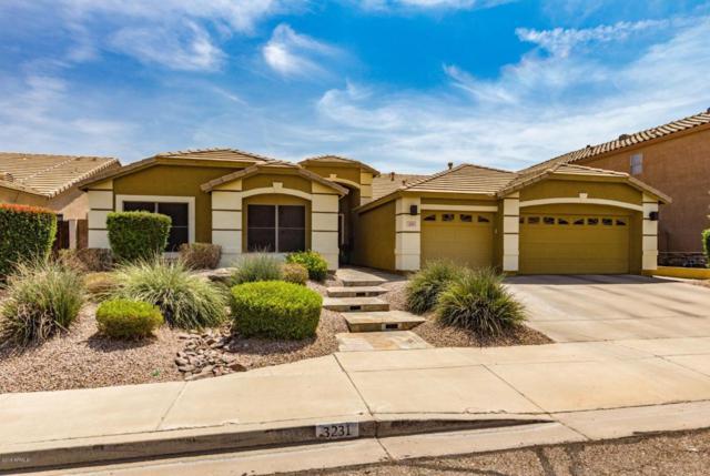 3231 W Daley Lane, Phoenix, AZ 85027 (MLS #5810352) :: The W Group